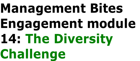 Management Bites Engagement module  14: The Diversity  Challenge
